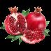 نگهدارنده میوه انار