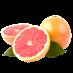 نگهدارنده میوه گریپفروت