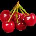 نگهدارنده میوه گیلاس