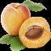 Apricot زردآلو